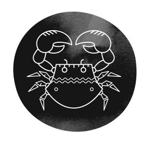 https://isisbuenosaires.com.ar/wp-content/uploads/2018/02/horoscope_dark_04.png